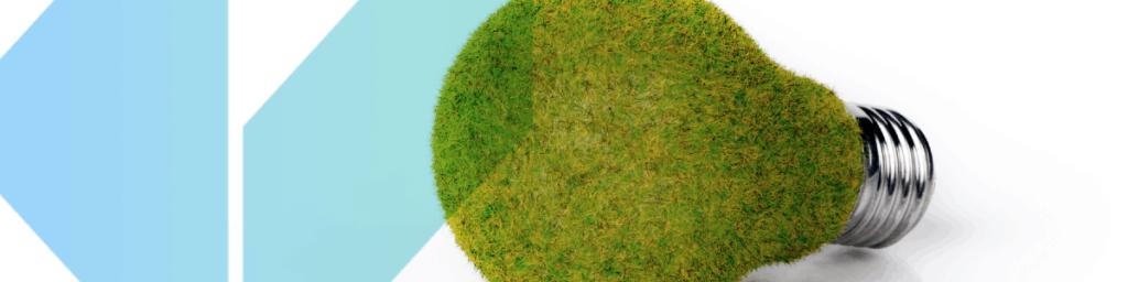 A light bulb made of grass. co2 mitigation